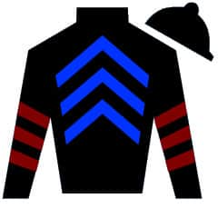 Clever Miss Silks