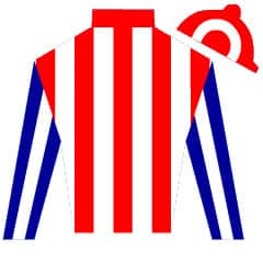Harry Hunt Silks