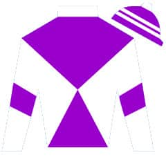 The High Man Silks