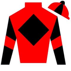 Edinburgh Knight Silks