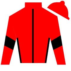 Romeo's On Fire Silks