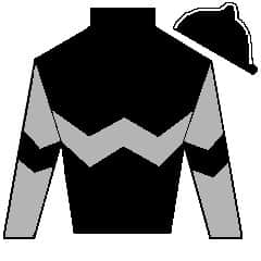 Mega Champion Silks