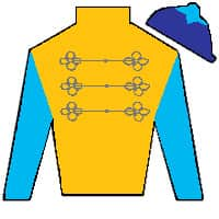 Flying Blue  Silks