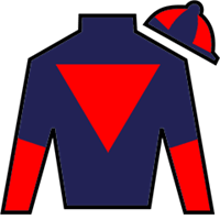 Horse Racing, NY RACING, NY-Racing Club Handicapping Guide, NY-Racing Handicapping Guides, The Handicapping Guide, Free Expert Horse